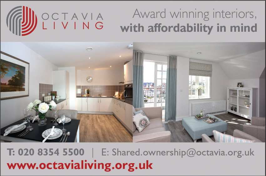 Octavia living grey advert showing inside homes